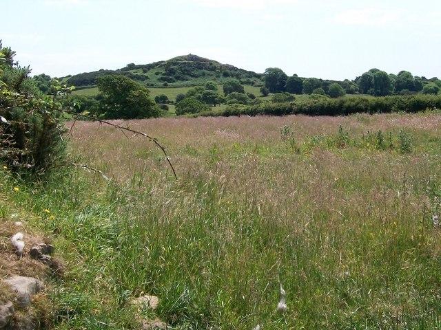 View across a hay field towards the rock outcrops above Penlon Llyn