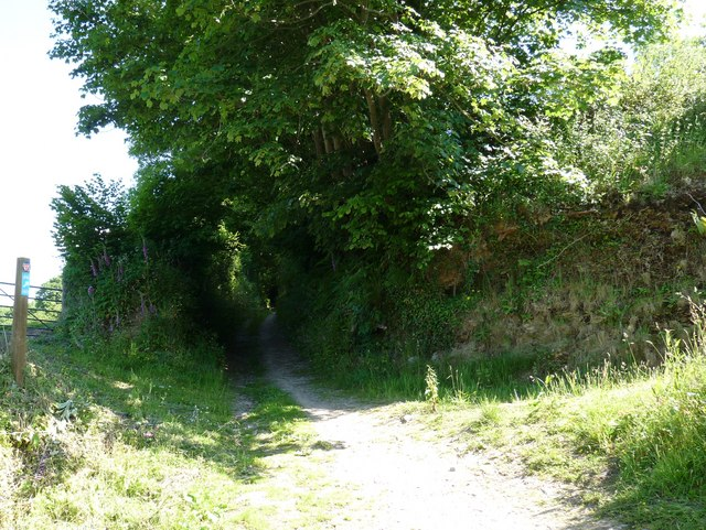 Castle lane which leads to Knowle
