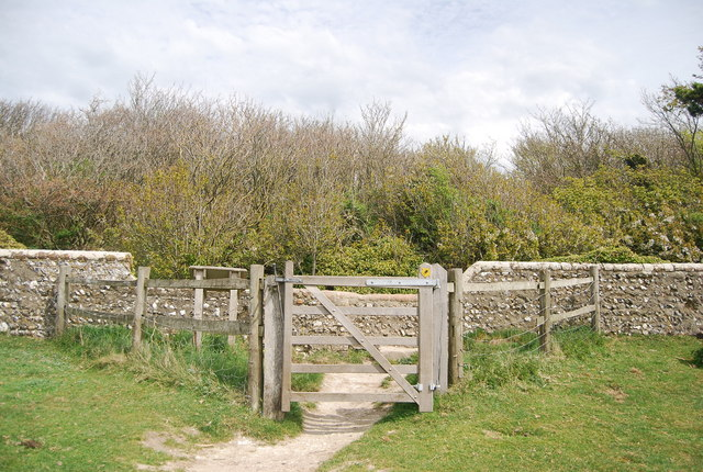 Entering The Friston Forest
