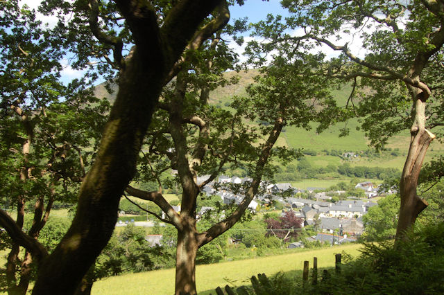 Abergynolwyn through the trees