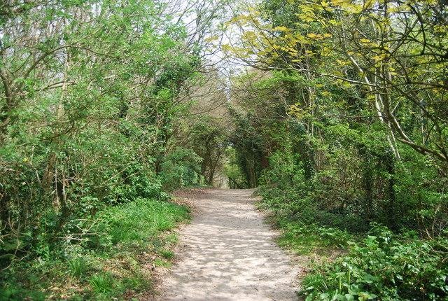 Footpath to Westdean