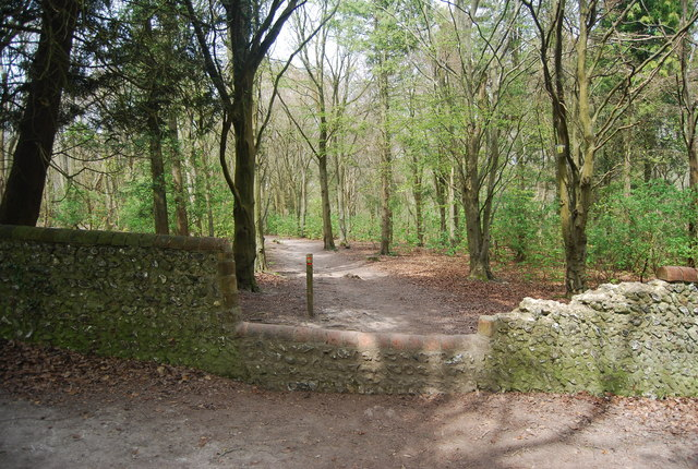 Footpath crosses a flint wall, Friston Forest