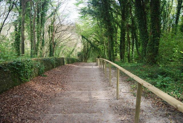 Footpath steps to Westdean