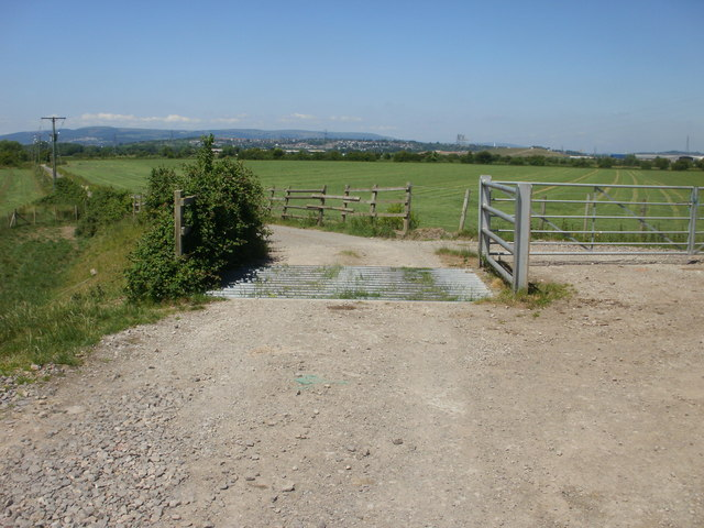 Cattle grid on road to former West Usk Lighthouse