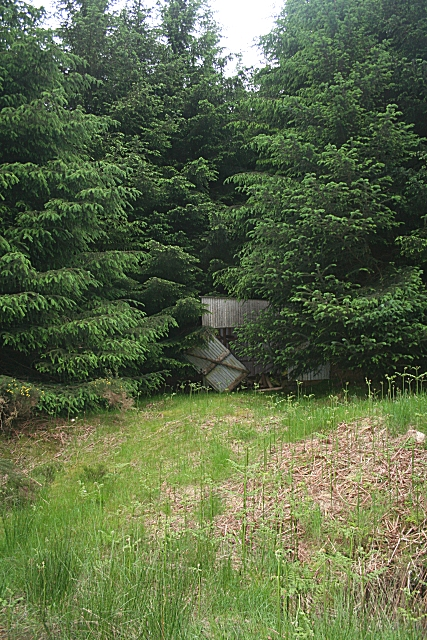 Derelict Shed