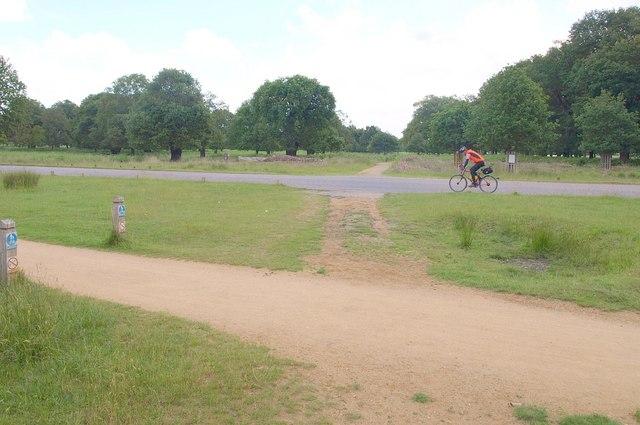 Road crossing, Richmond Park