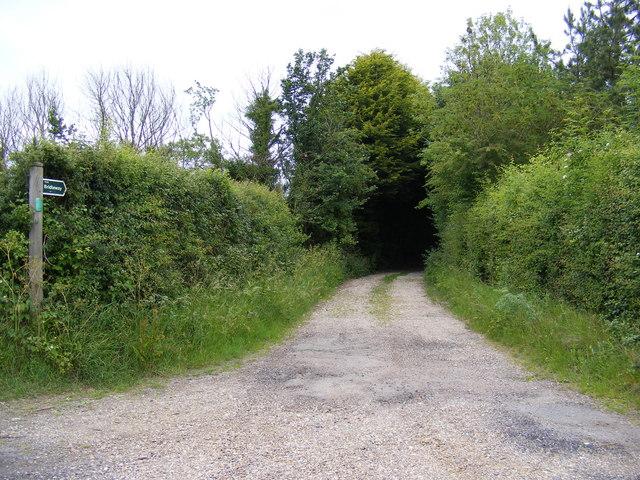 Bridleway to Packway Farm & Peasenhall Road