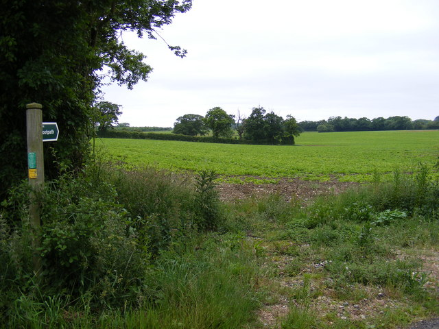 Footpath  to New Road