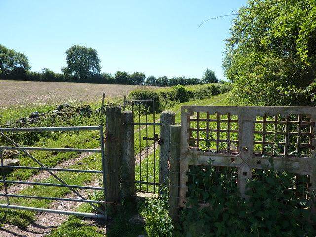 Gates on a bridleway, near Bradbourne