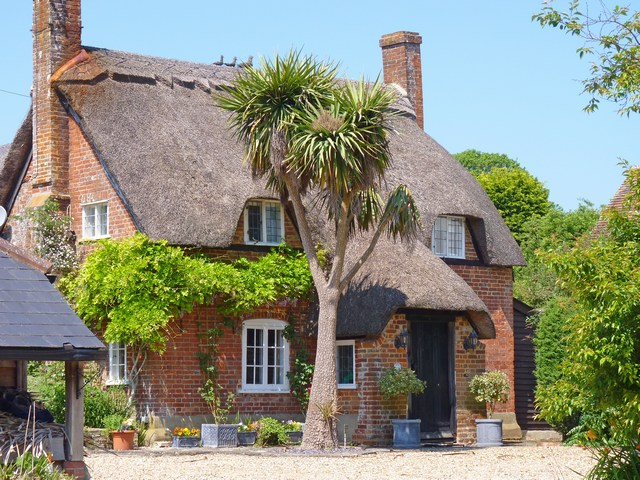 Thatched Cottage with Cordyline