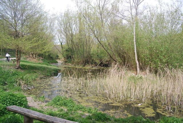 Pond, Westdean