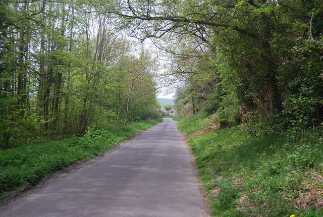 Lane on the edge of Friston Forest