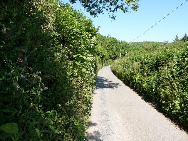 Nethercott Road