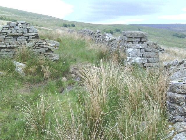Dry stone walls beside footpath near Flust