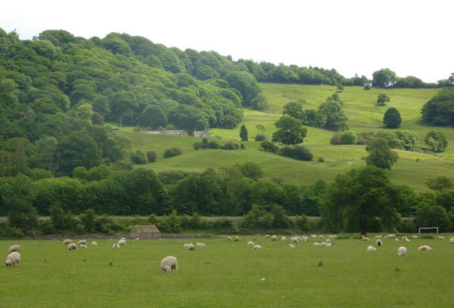Countryside view near Cromford Bridge