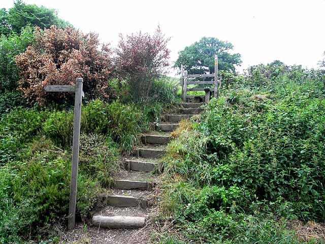 Steps on Offa's Dyke Path