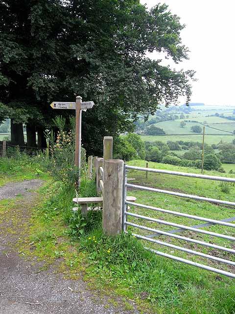 Offa's Dyke Path at Bryndrinog
