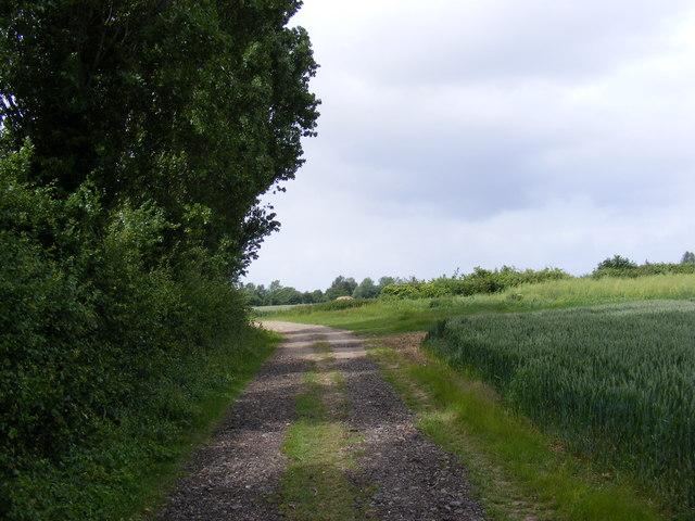 Footpath to Packway Farm