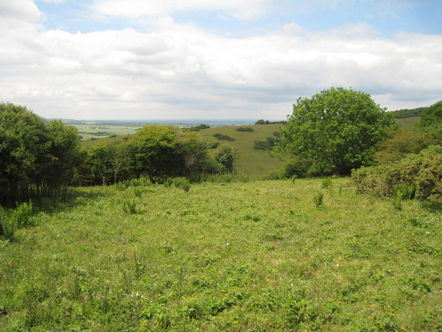 Fields at Lullington Heath