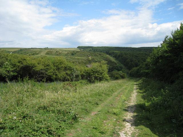 Footpath beside Friston Woods
