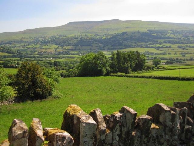 Pasture land below Cefn Moel, looking across the Rhiangoll valley towards Pen Allt-mawr