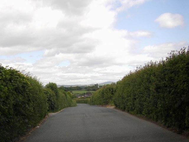 Cockerham Road near Cocker House Bridge