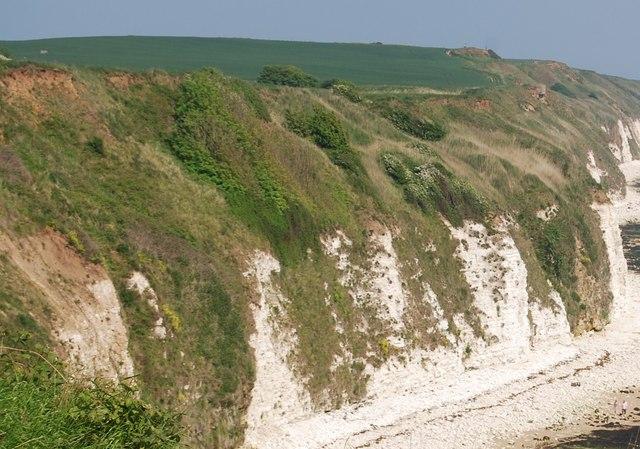 Chalk cliffs east of Dane's Dyke
