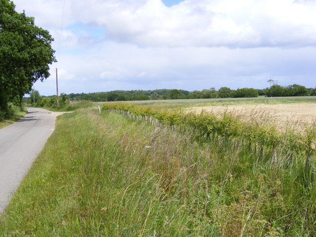 Road to the A144 Bramfield Road & New Hedge