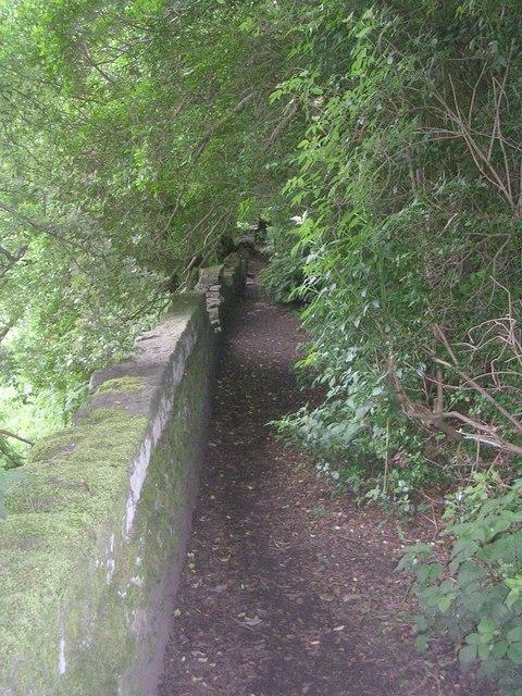 Footpath - White Gate