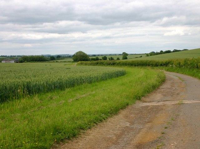 Driveway to Tusbrook Farm