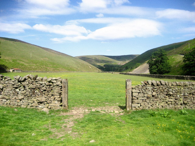 Pastures beside Langden Brook