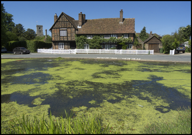 The Village Pond and Manor House, Aldbury