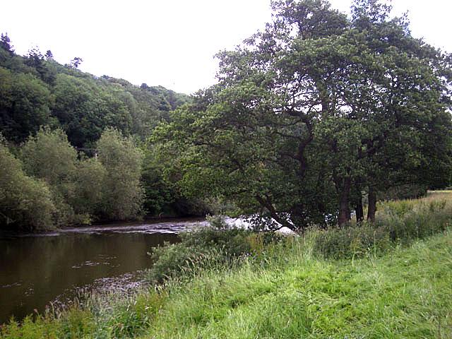 River Severn near Dudmaston Hall