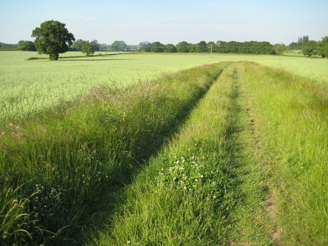 Footpath to Newland