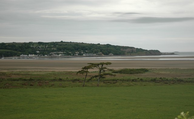 Trees on the edge of Red Wharf Bay