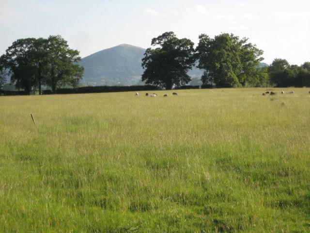 Malvern Hills from Newland