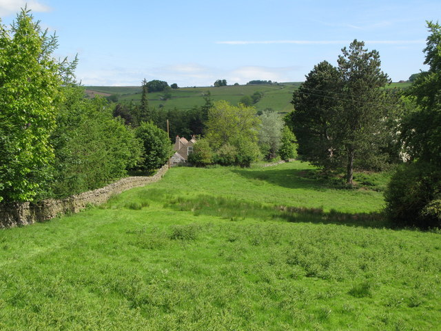 Pastures and woodland near Thornley Gate (2)