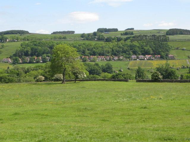 Pastures near Juniper House.
