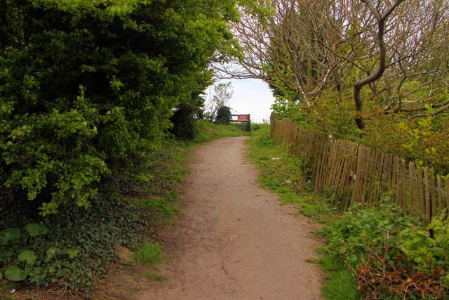 Footpath to the cliff