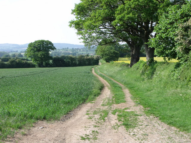 The Offa's Dyke long distance path near Chirbury, Shropshire