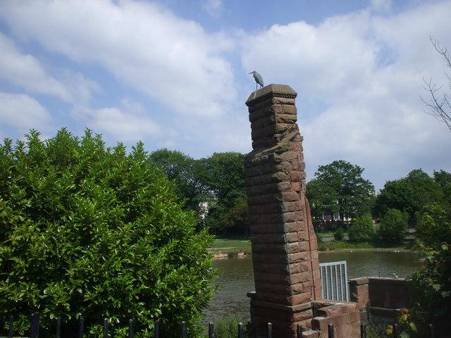 Princes Park lake, surveyed by a heron