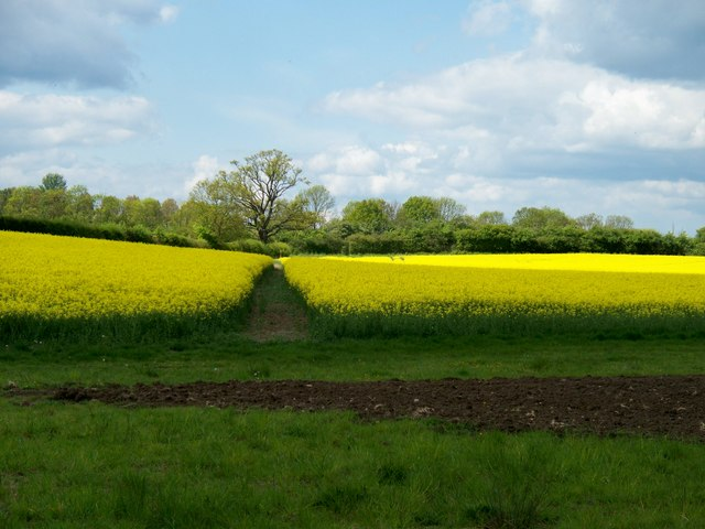 Path to Stretton-on-Fosse [3]