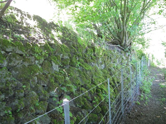 Base of embankment, Snow Hill line