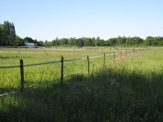 Paddocks, Great Pinley Farm