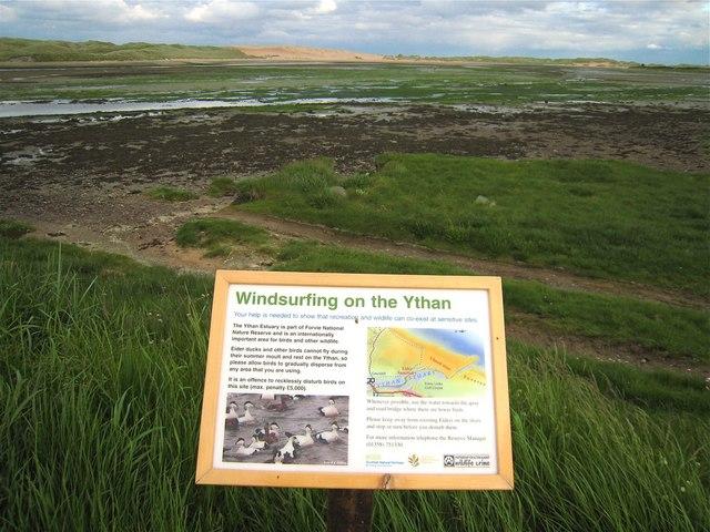 Newburgh: windsurfing and eider ducks