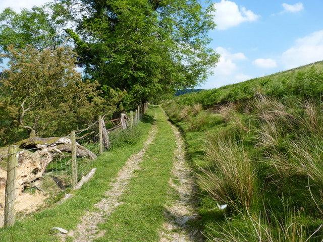 Bridleway above Collfryn
