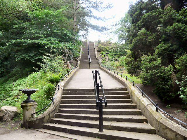 Steps in Vernon Park