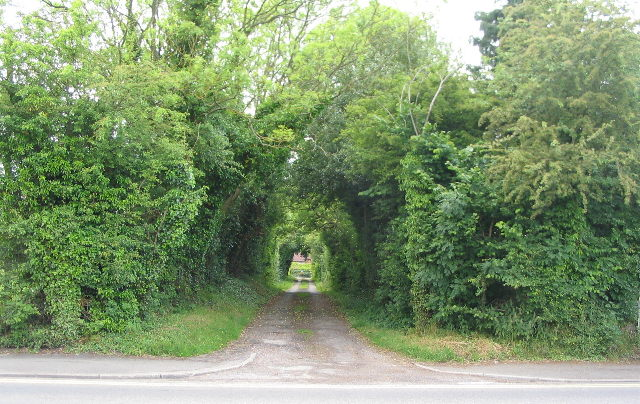 Track to Conway Farm