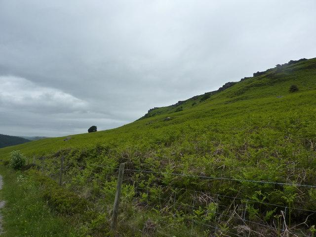 Bamford Edge from New Road