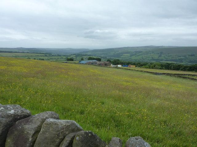 High Lees Farm, near Bamford